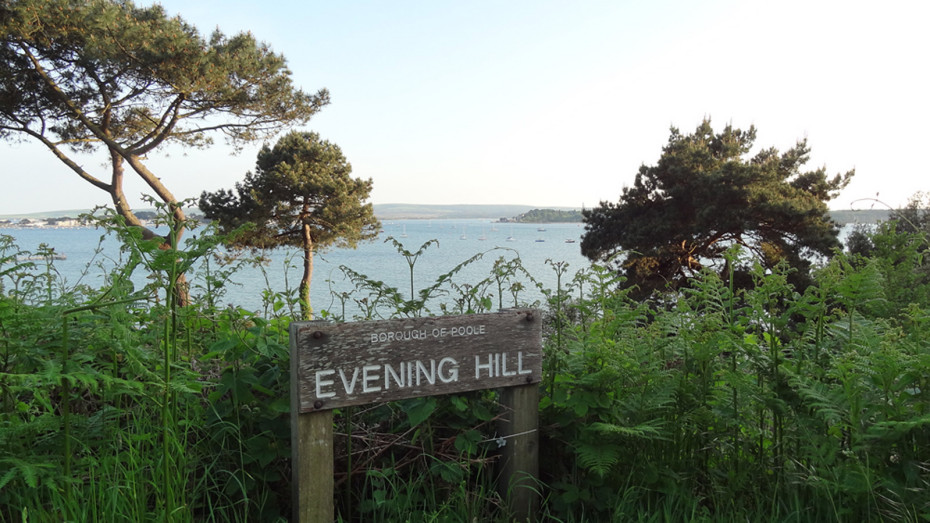 Evening Hill, Poole